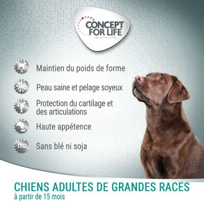 Concept for Life Large Adult pour chien