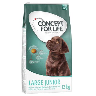 Concept for Life Large Junior pour chien