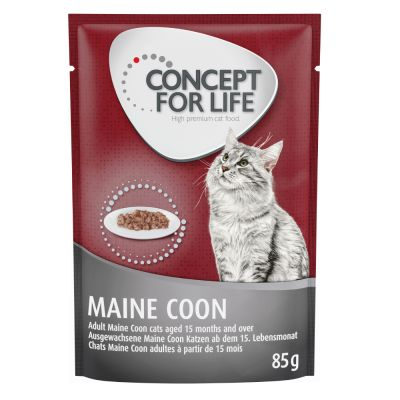 Concept for Life Maine Coon Adult (Ragout-Kwaliteit) Kattenvoer