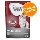 Concept for Life Maine Coon 1 x 85 g