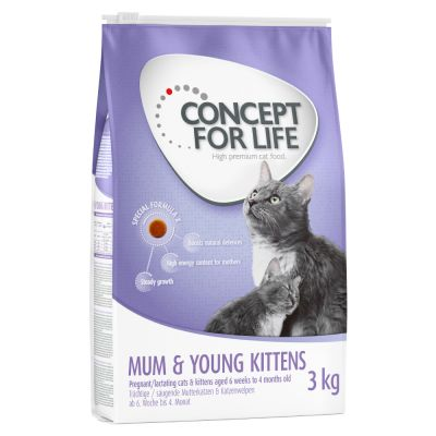 Concept for Life Mum & Young Kittens pienso para gatos