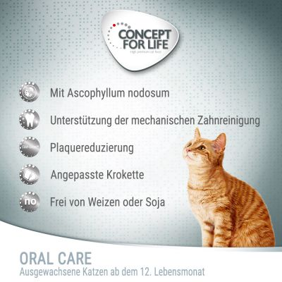 Concept for Life Oral Care Kattenvoer