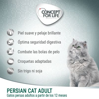 Concept for Life Persian Adult