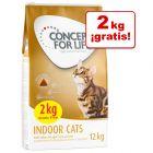 Concept for Life pienso para gatos 10 + 2 kg ¡gratis!