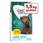 Concept for Life ração para cães em promoção: 12 + 1,5 kg grátis!