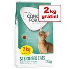 Concept for Life ração para gatos em promoção: 10 + 2 kg grátis!