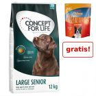 Concept for Life sac mare + Rocco Chings XXL, 900 g, gratis!