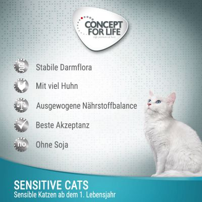 Concept for Life Sensitive Cats - in Gelee