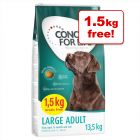 Concept for Life Size Dry Dog Food Bonus Bags - 12kg + 1.5kg Extra Free!*