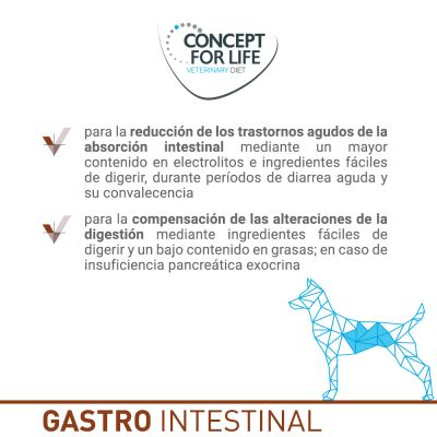 Concept for Life Veterinary Diet Gastro Intestinal pienso para perros