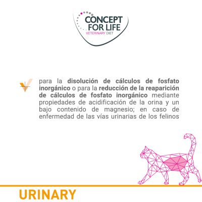 Concept for Life Veterinary Diet Urinary con vacuno para gatos