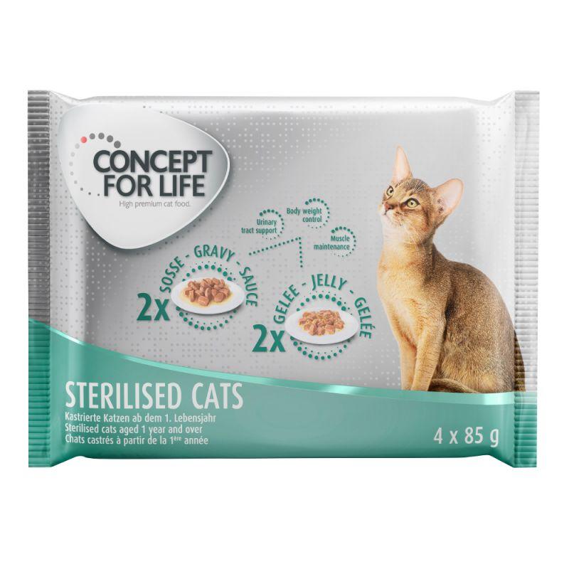 Concept for Life 4 x 85 g - Pack de experimentação