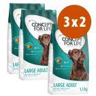 Concept for Life 3 x 1,5 kg pienso para perros: 2 + 1 ¡gratis!