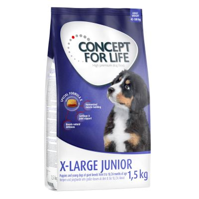 Concept for Life X-Large Junior para cães