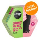 Cosma Gourmet Mix Box zum Probierpreis!