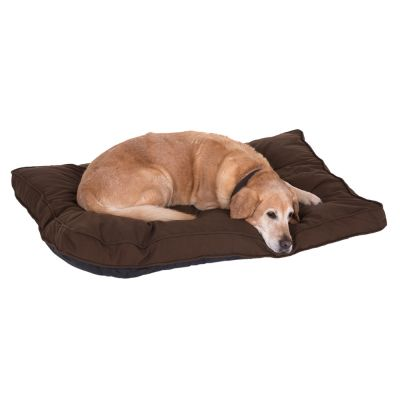 Cosy Mocha Brown Dog Mattress