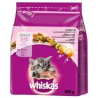 Crocchette Whiskas Junior Salmone