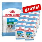 Crocchette Royal Canin Size + 12 x 85 g / 10 x 140 g umido gratis!