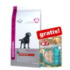 Croquettes Eukanuba Adult Breed Specific + friandises 8in1 offertes !