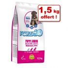 Croquettes Forza10 Puppy Junior, poisson 11 kg + 1,5 kg offert !