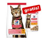 Croquettes Hill's Science Plan pour chat + 12 x 85 g sachets offerts !