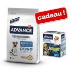 Croquettes Advance Mini 7,5 kg + friandises Dental Care Stick Mini 360 g offertes !