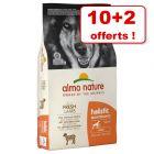 Croquettes Almo Nature Holistic 10 kg + 2 kg offerts !