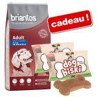 Croquettes Briantos 14 kg + biscuits DogBiski 2 x 90 g offerts !