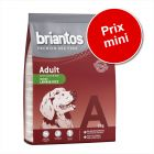 Croquettes Briantos 1 kg / 3 kg à prix mini !
