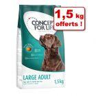 Croquettes Concept for Life 3 kg + 1,5 kg offerts !