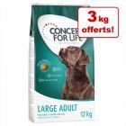 Croquettes Concept for Life 12 kg + 3 kg offerts !
