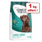 Croquettes Concept for Life pour chien : 5 + 1 kg offert !