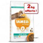 Croquettes IAMS for Vitality pour chat 8 kg + 2 kg offerts !