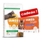 Croquettes IAMS 10 kg + IAMS Delights Adult en gelée 12 x 85 g offerts !