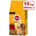 Croquettes Pedigree pour chien 20 kg + 10 kg offerts !
