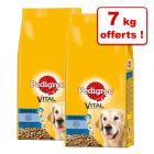 Croquettes Pedigree Senior 8+ pour chien 19 kg + 7 kg offerts !