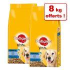 Croquettes Pedigree Senior 8+ pour chien 18 kg + 8 kg offerts !