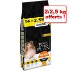 Croquettes PURINA PRO PLAN pour chien 12/14 kg + 2/2,5 kg offerts !