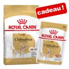 Croquettes Royal Canin Breed Adult 3 à 12 kg + nourriture humide offerte !