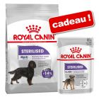Croquettes Royal Canin Care Nutrition 8/9/10 kg + sachets 12 x 85 g offerts !