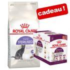 Croquettes Royal Canin 10 kg + 12 x 85 g de nourriture humide offerte !