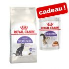 Croquettes Royal Canin 10 kg + 12 x 85 / 195 g sachets offerts !