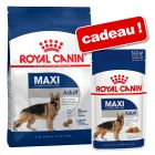 Croquettes Royal Canin Size 8 / 15 kg + sachets 12/10 x 85/140 g offerts !