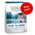 Croquettes Wolf of Wilderness 1 kg pour chien à prix spécial !