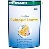 Dennerle Catappa Leaves