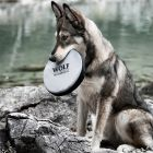 Disco Wolf of Wilderness para cães