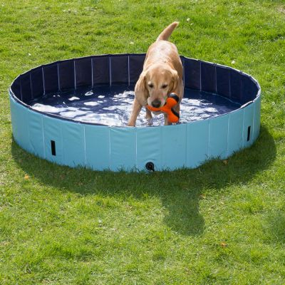 Doggy Paddling Pool
