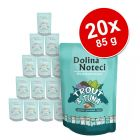 Dolina Noteci Superfood, 20 x 85 g