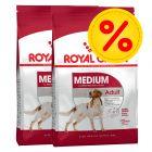 Doppelpack Royal Canin Size Medium
