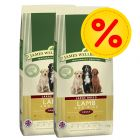 Dubbelpack: 2 x 15 kg James Wellbeloved Adult / Senior hundfoder